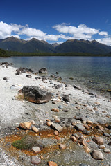 Fiordland, New Zealand - Lake Manapouri