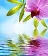Wellness Hintergrund mit Spiegelung