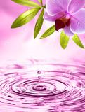 Fototapety Wellness Motiv mit Orchidee
