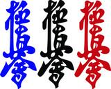 Martial arts.Kanji.Karate kyokushinkai hieroglyph.Colored . poster