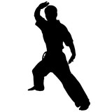 martial arts. Karate block. poster
