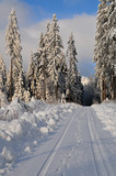 Winter Schee Landschaft Wald poster