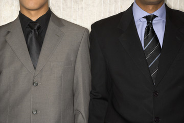Two Businessmen in Suits and Neckties