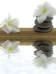 décor zen, galets, fleurs frangipanier, set bambou, fond blanc