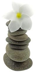 pyramide zen, galets, fleur frangipanier, fond blanc