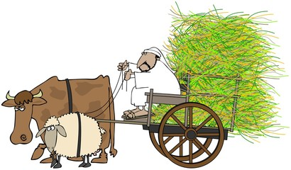 Man Driving A Hay Cart