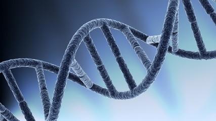 DNA macro - loop