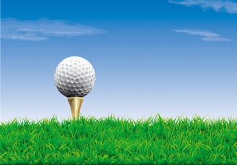 Vector. Golf course