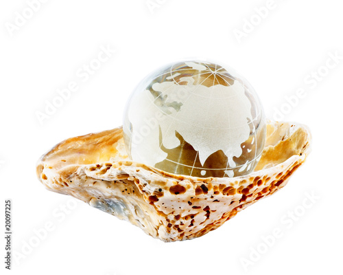 Earth globe in a seashell isolated on white background