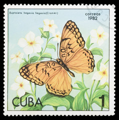Butterfly on a postage stamp