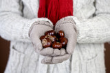 A woman holding a handful of conkers