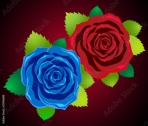 symbol of love of woman and man - two roses red and blue