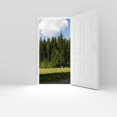 3d white room and door with a nice view