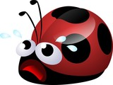 ladybug desperate poster