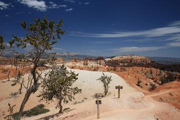 Wüstenlandschaft  Bryce Canyon