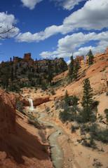 Im Bryce Canyon, USA