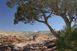 Paysage de Petra