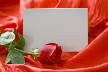 Red rose and invitation card on silk background