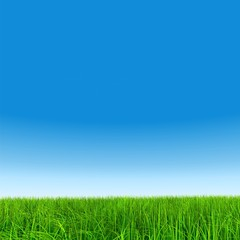 High resolution grass and sky background