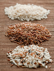 Various sorts of rice