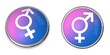 Button White Male-Female Gender Sign on Blue and Pink