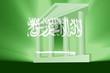 Flag of Saudi Arabia government
