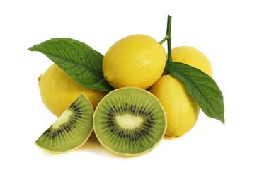 Limoni transgenici