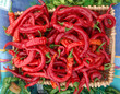 Basket full of Red Peppers