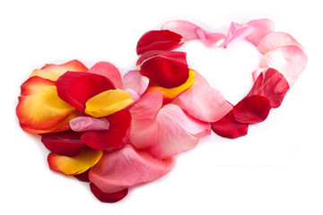 Two interlocking hearts with rose petal
