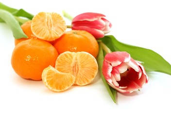 tangerine and tulips isolated on white