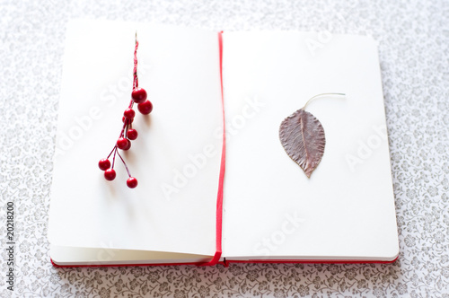 romantic letter with berries and leaf