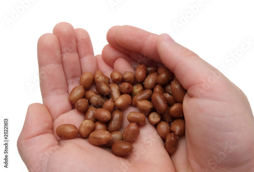 Child's hand with peanuts