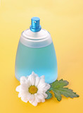 Bottle of perfume  and  camomile on yellow background