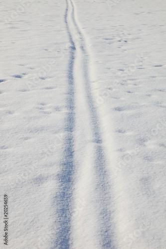 Skispuren im Pulverschnee, winter phat, Schneedecke