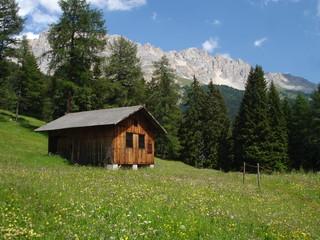 Heuhütte in Südtirol