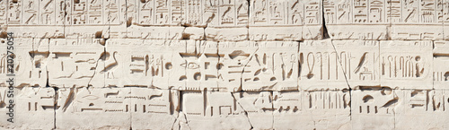 Hieroglyphic relief in the Temple of Karnak at Luxor - 20275054