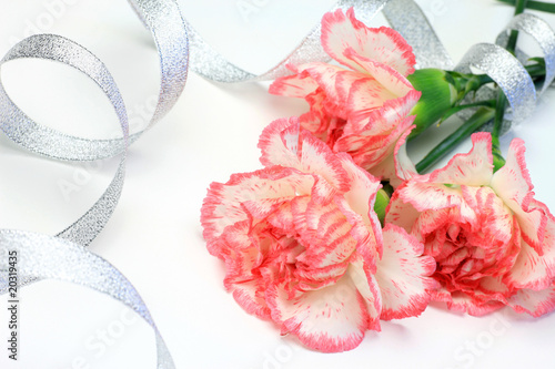 carnation and  ribbon