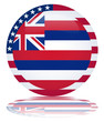 Hawaii State Round Flag Button (Hawai Hawaiian USA Vector Web)