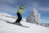 Skifahrerin mit verschneiten Bäumen