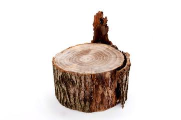ceppo corteccia legno olmo