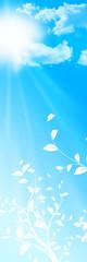 ciel bleu, branches d'arbres et soleil au printemps ou en été