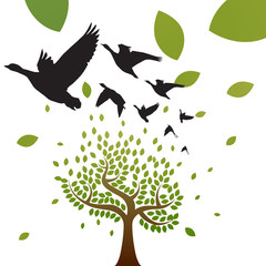 birds and tree vector