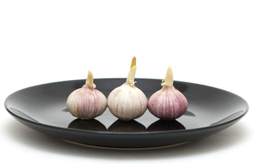 Three garlics on a plate