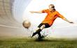 Leinwandbild Motiv Shoot of football player on the field of olimpic stadium