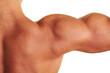 Nackte Schulter