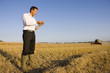 Businessman in wheat field