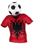 National Soccer Team of Albania   All Teams Collection   poster