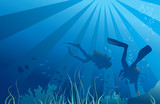 Scuba divers, sea  life. Vector illustration