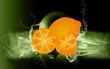 Illustration of orange and slices