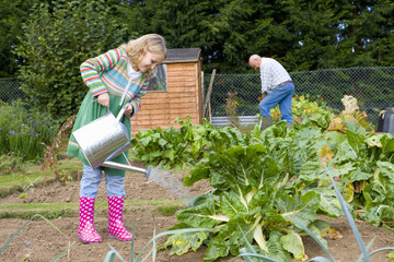 Girl watering vegetables in garden